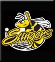 Willmar Stingers Home Game