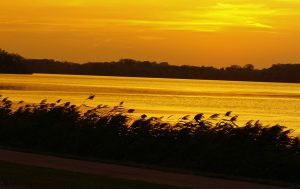 Just think of the many beautiful pictures you will get on your next bike ride through the Willmar Lakes Area.